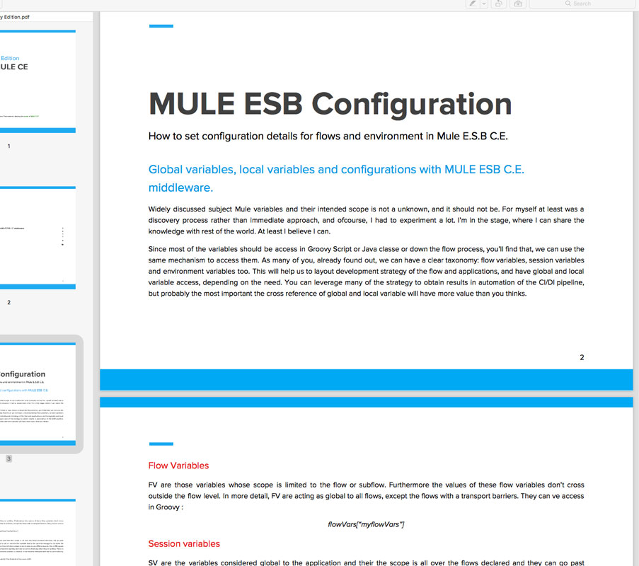 How to set configuration details for flows and environment in Mule ESB CE  (pdf)